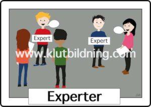 Experter
